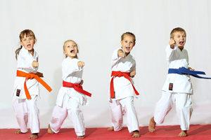 karate_s